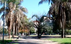 Caminatas CDR: Plaza Las Heras