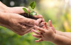 CDR y el medio ambiente