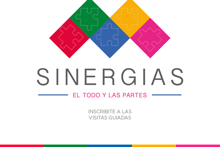 Sinergias: Visitas Guiadas - SAB 19 de Agosto - 16hs
